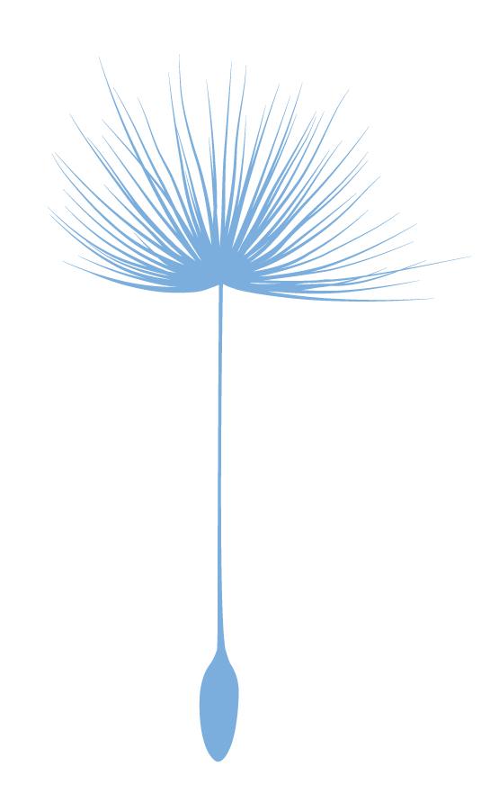 Bild Samen Blau