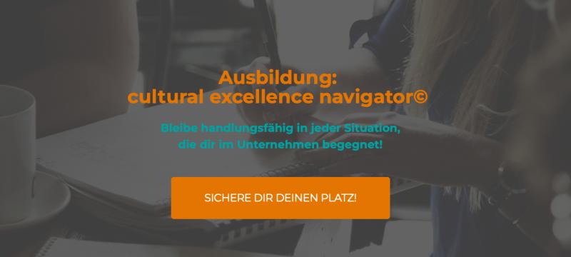 Ausbildung:  cultural excellence navigator